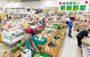 佐賀県武雄温泉物産館|店舗情報〜新鮮野菜販売所