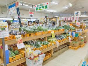 佐賀県武雄温泉物産館|愛情野菜市